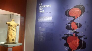 Vorstellungen der Antike: Die Seele ist ein Oktopus