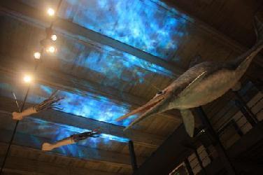 Ungewisse Zukunft für Juramuseum auf der Willibaldsburg