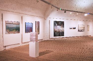 """Kunstausstellung """"Unter Wasser"""" in der Harderbastei"""
